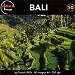 Bali (AUI-CD50)