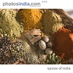 Spices of India (PNT-PIVCD026)