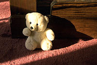 White teddy bear sitting on red rug lit by sunbeam