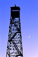 Vultures roost on observation tower. Crescent moon. Malheur National Wildlife Refuge. Oregon. USA