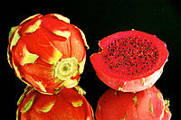 Pitahaya. Dragon fruit from Southeast Asia