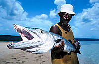 Aged Fisherman and his barracuda. Dominican Republic