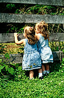 Twin toddler girls in denim dresses, looking between slats of wooden fence