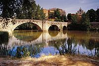 Bridge over Carrion River. Palencia. Spain