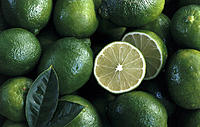 Limes, Leaves, Still life