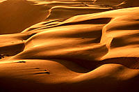 Sand dunes. Rub al Khali desert (aka. The Empty Quarter). United Arab Emirates