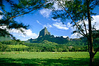 French Polynesia, Moorea, South Pacific´s Bali Hai vu from across green field