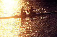 Annual sculling race. Cambridge. Massachusetts. USA