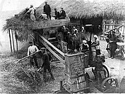 Group of farmers working on a harvester