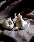 Two Garlic Bulbs with Clove