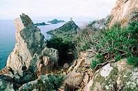 Iles Sanguinaires, Corsica Island. France