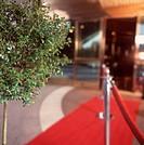 Hoteleingang | Hotel Entrance |