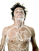 CREDIT: NEAL GRUNDY/SCIENCE PHOTO LIBRARY  Anatomy.  Man  overlaid  with  an illustration  showing  the  musculature  and blood vessels of the upper b...