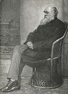 Charles Darwin (1809-1882), British naturalist. Darwin studied medicine and theology, but was most interested in natural history. In 1831 he joined th...