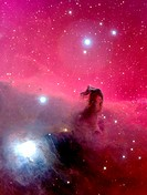 Horsehead Nebula, optical image. North is at left. The distinctive horsehead shape is formed by the dark nebula B33 being silhouetted against the brig...