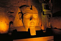 State of Ramses II. Luxor (ancient egyptian city of Thebes). East Bank of the Nile