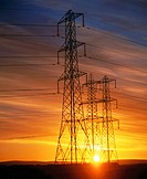 Electricity pylons. Scotland (thumbnail)