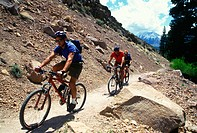 Mountain bikers riding up a hill