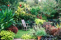 Mixed annual and perennial summer garden