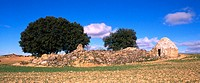 Country landscape. Cuenca province. Spain