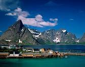 SakrisoyLofoten IslandsNorway