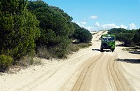 4x4 vehicle between the ´Dunas móviles´ (moving dunes) and ´corrales´ (groups of pine trees encircled by dunes). Doñana National Park. Huelva province...