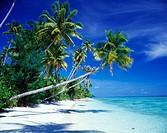 Tropical beach. Archipelago of Raja Ampat. Papua, Indonesia