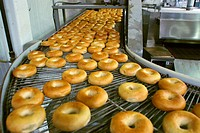 Bagels on Production Line