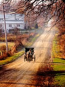 Amish buggy on country dirt road. Shipshewana. Indiana. USA