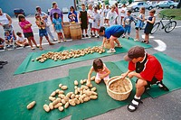 Competitors during potato speed picking contest, Potato Blossom Festival. Fort Fairfield. Aroostook County, Maine. USA