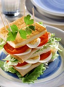 Egg Turkey and Tomato Club Sandwich