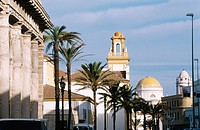 View of Cadiz with the Cathedral at the background. Andalucia. Spain