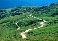 France, Savoie, road winding through hilly area