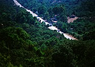 Cars traveling through wooded highway, birdseye view (thumbnail)