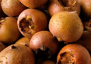 Medlars, close-up, full frame
