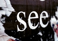 'See' text printed on torn poster, close-up