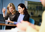 Women working on laptop computer