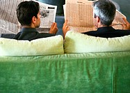 Businessmen sitting side by side with newspapers, rear view