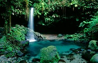 Emerald Lagoon. Morne Trois Pitons National Park. Commonwealth of Dominica. West Indies. Caribbean