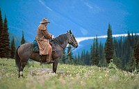 Cowboy in Caribou Mountains. British Columbia. Canada