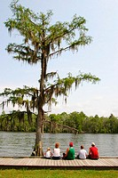 Fairview-Riverside State Park. St. Tammany Parish. Louisiana. USA