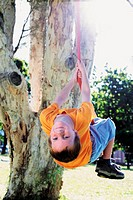 Boy swinging on a tree rope