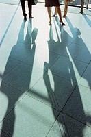 Businesspeople casting a shadow