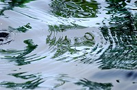 Ripples on pond