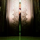 Man peering through elevator doors (thumbnail)