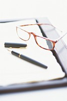 Personal Organiser, Spectacles and a Fountain Pen