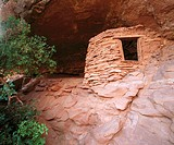 Anasazi ruins. Salt creek area. Canyonland National Park. Utah. USA