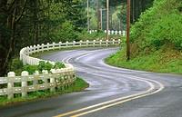 Highway in rain. Columbia River Gorge National Scenic Area. Oregon, USA