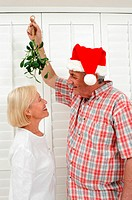 Mistletoe