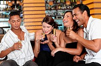 Friends drinking in bar (thumbnail)